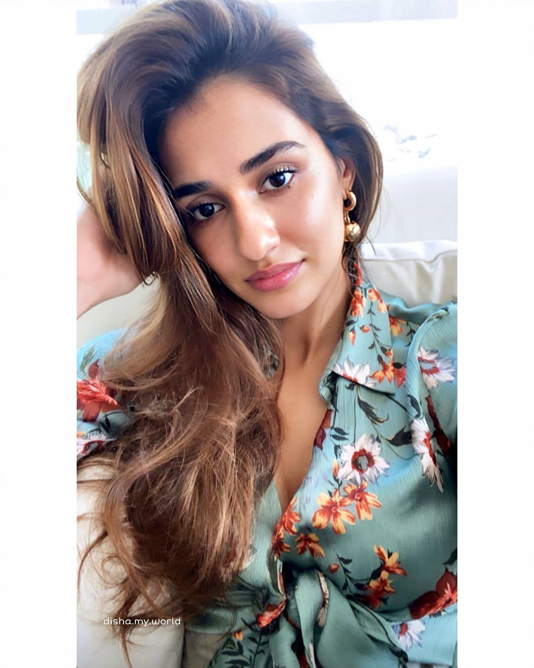 Bollywood Pretty Actress Disha Patani