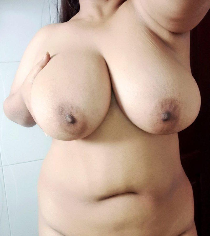 Big Boobs Desi Aunties Photo pornhub HD